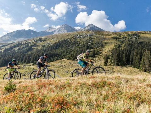 E-Mountainbiketour durch die Surselva